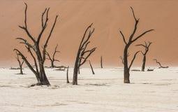 Sossusvlei dans le désert de Namib, Namibie Image stock