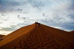 Sossusvlei, de Woestijn van Namibië, Afrika Royalty-vrije Stock Afbeeldingen