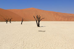 Sossusvlei Dead Valley Landscape In The Nanib Desert Near Sesrie Stock Photography