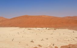 Sossusvlei dead valley landscape. Nanib desert Royalty Free Stock Images