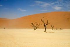 Sossusvlei desert, Namibia. Dead trees between the red dunes of Sossusvlei desert, Namibia stock photography
