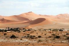 Sossusvlei desert, Namibia. The red dunes of Sossusvlei desert at the sunset, Namibia stock photography