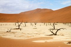 Sossusvlei desert, Namibia Royalty Free Stock Photography
