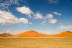 Sossusvlei desert, Namibia. The red sand dunes of Sossusvlei desert, Namibia Royalty Free Stock Photos