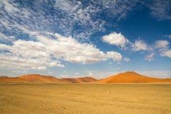 Sossusvlei desert, Namibia. The red sand dunes of Sossusvlei desert, Namibia stock photo