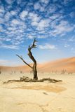 Sossusvlei desert, Namibia. A windy Sossusvlei desert, Namibia Royalty Free Stock Photo
