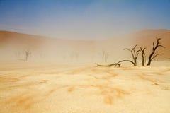 Sossusvlei desert, Namibia. A windy Sossusvlei desert, Namibia stock photography