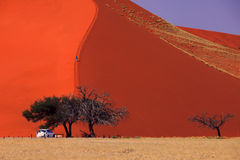Sossusvlei - Dune 45 Royalty Free Stock Photo