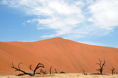 Sossusvlei dunes. Red dunes against clear blue sky. Sossusvlei, Namib desert, Namibia Royalty Free Stock Image