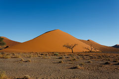 Sossusvlei dunes. Red dunes on the road to Sossusvlei, Namibia Royalty Free Stock Images