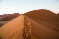 Sossusvlei dyn 45 Namibia arkivbilder