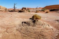 Sossusvlei härligt landskap av Death Valley Royaltyfri Foto