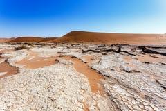 Sossusvlei härligt landskap av Death Valley Royaltyfria Bilder