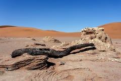 Sossusvlei härligt landskap av Death Valley, Namibia Arkivfoton