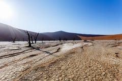 Sossusvlei härligt landskap av Death Valley, Namibia Royaltyfria Foton