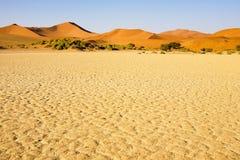 Sossusvlei land in Namibia. Sand dunes in namibian desert, Sossusvlei Africa stock images