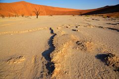 Sossusvlei landscape. With dead Acacia trees and red sand dunes, Namibia, southern Africa Stock Images