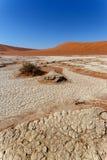 Sossusvlei mooi landschap van doodsvallei Royalty-vrije Stock Afbeeldingen