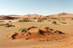 Sossusvlei, Namíbia Fotografia de Stock Royalty Free