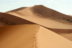 Sossusvlei, Namíbia Fotos de Stock