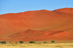 Sossusvlei, Namib Naukluft National Park, Namibia. Beautiful landscape with big red dunes and acacia trees at sunrise, Sossusvlei, Namib Naukluft National Park Royalty Free Stock Photo
