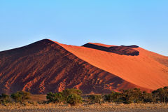 Sossusvlei, Namib Naukluft National Park, Namibia. Beautiful landscape with big red dunes and acacia trees at sunrise, Sossusvlei, Namib Naukluft National Park Stock Image