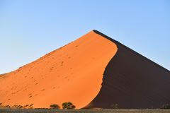 Sossusvlei, Namib Naukluft National Park, Namibia. Beautiful landscape with big red dunes and green trees at sunrise, Sossusvlei, Namib Naukluft National Park royalty free stock photo