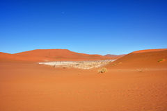 Sossusvlei, Namib Naukluft National Park, Namibia. Beautiful landscape with big red dunes at sunrise, Sossusvlei, Namib Naukluft National Park, Namibia Stock Photos