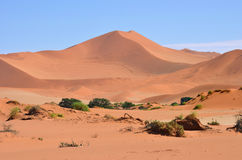 Sossusvlei, Namib Naukluft National Park, Namibia Royalty Free Stock Image