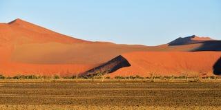 Sossusvlei, Namib Naukluft National Park, Namibia. Beautiful landscape with big red dunes and trees at sunrise, Sossusvlei, Namib Naukluft National Park, Namibia stock photography