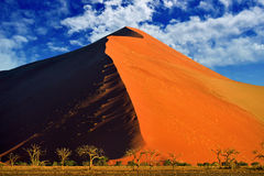 Sossusvlei, Namib Naukluft National Park, Namibia. Beautiful landscape with big red dunes and trees at sunrise, cloudy sky background , Sossusvlei, Namib Royalty Free Stock Photo