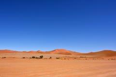 Sossusvlei, Namib Naukluft National Park, Namibia. Beautiful landscape with dunes and trees at sunrise, Sossusvlei, Namib Naukluft National Park, Namibia, Africa stock photo