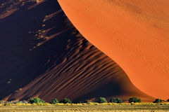 Sossusvlei, Namib Naukluft National Park, Namibia. Beautiful landscape with red dune and trees at sunrise, Sossusvlei, Namib Naukluft National Park, Namibia Stock Image