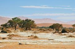 Sossusvlei, Namib Naukluft National Park, Namibia. Beautiful landscape with red dunes at sunrise, Sossusvlei, Namib Naukluft National Park, Namibia royalty free stock photos
