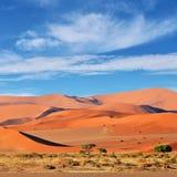 Sossusvlei Namib Naukluft nationalpark, Namibia Fotografering för Bildbyråer