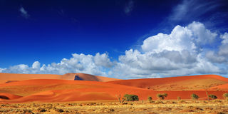 Sossusvlei Namib Naukluft nationalpark, Namibia Arkivbilder