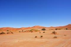 Sossusvlei Namib Naukluft nationalpark, Namibia Royaltyfria Foton