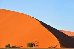 Sossusvlei Namib Naukluft nationalpark, Namibia dyn 45 Royaltyfria Bilder