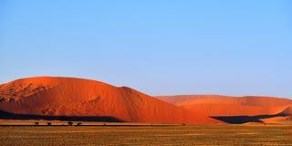 Sossusvlei, Namib Naukluft park narodowy, Namibia Fotografia Royalty Free