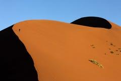 Sossusvlei - Namib-Nuakluft Desert - Namibia. Tourist climbing a huge sand dune at Sossusvlei in the Namib-Nuakluft Desert in Namibia royalty free stock images