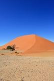 Sossusvlei Namibië Afrika Royalty-vrije Stock Afbeelding