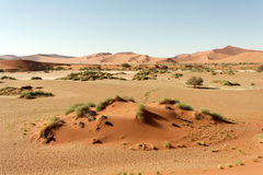 Sossusvlei, Namibia. Huge sand dunes of Sossusvlei, picture taken in Namibia royalty free stock photography