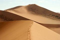Sossusvlei, Namibia. Huge sand dunes of Sossusvlei, picture taken in Namibia Stock Photos