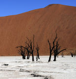 Sossusvlei in Namibia Stock Photo