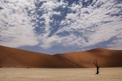 Sossusvlei, Namibia Obrazy Royalty Free