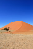 Sossusvlei Namibia Africa. Dune 45 in Sossusvlei, most known dune in Namibia, best of Namibia landscape royalty free stock image