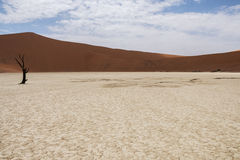 Sossusvlei, Namibia Stock Images