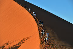SOSSUSVLEI, NAMIBIA, DUNE 45. SOSSUSVLEI, NAMIBIA - JAN 29, 2016: Tourists climb Dune No.45 most popular dune in the whole World, Namibia, Africa Royalty Free Stock Photos