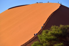SOSSUSVLEI, NAMIBIA, DUNE 45. SOSSUSVLEI, NAMIBIA - JAN 29, 2016: Tourists climb Dune No.45 most popular dune in the whole World, Namibia, Africa Royalty Free Stock Photo