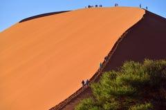 SOSSUSVLEI, NAMIBIA, DUNE 45. SOSSUSVLEI, NAMIBIA - JAN 29, 2016: Tourists climb Dune No.45 most popular dune in the whole World, Namibia, Africa royalty free stock photo